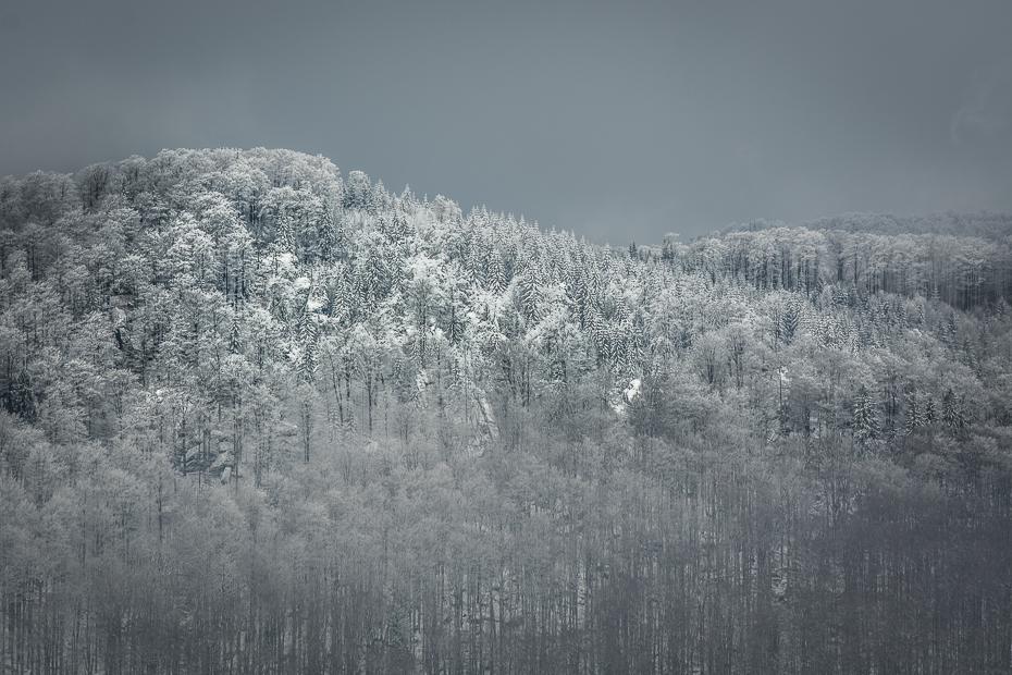 Ořešník (Jizerské hory)