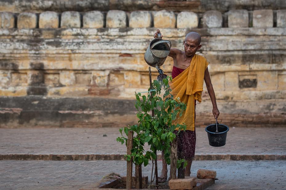 Mnich Ludzie Nikon D7100 AF-S Nikkor 70-200mm f/2.8G 0 Myanmar woda świątynia turystyka drzewo