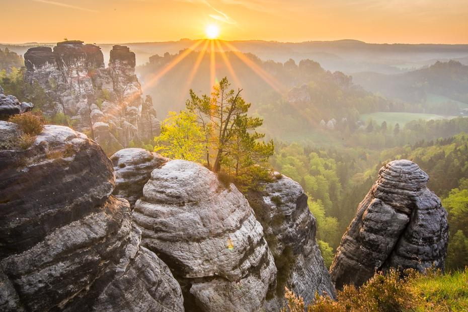 Saska Szwajcaria Krajobraz Nikon D7100 Sigma 10-20mm f/3.5 HSM Natura skała pustynia Góra niebo Park Narodowy drzewo ranek światło słoneczne krajobraz