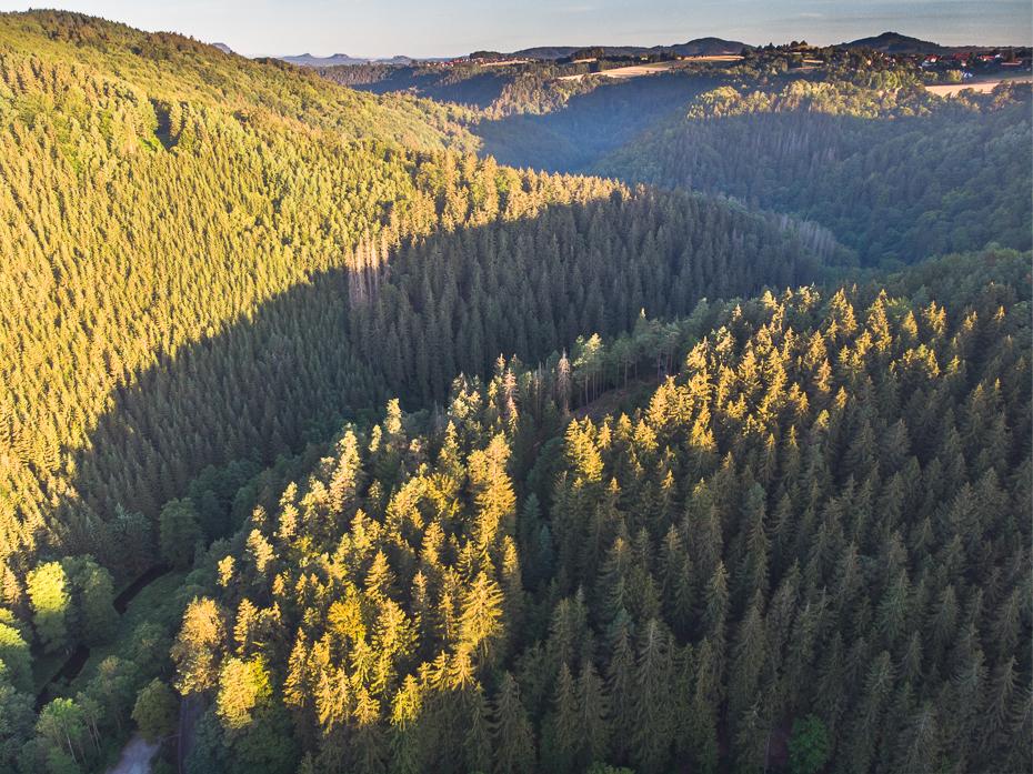 Saska Szwajcaria Krajobraz Mavic Air ekosystem Natura pustynia wegetacja drzewo liść umiarkowane liściaste i mieszane Góra las Park Narodowy