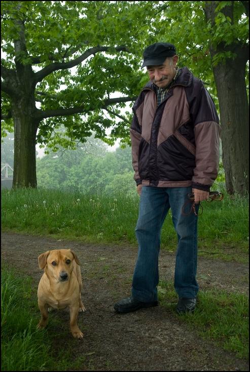 Spacer wałach Powódź 0 Wrocław Nikon D200 AF-S Zoom-Nikkor 17-55mm f/2.8G IF-ED pies drzewo ssak pies jak ssak roślina drzewiasta kręgowiec roślina trawa męski lesisty teren