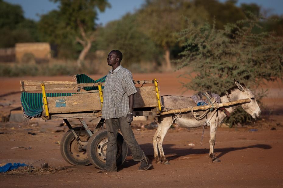 Dwukółka Mali Nikon D300 AF-S Nikkor 70-200mm f/2.8G Budapeszt Bamako 0 rodzaj transportu piasek pojazd wózek obszar wiejski niebo ecoregion krajobraz drzewo osioł