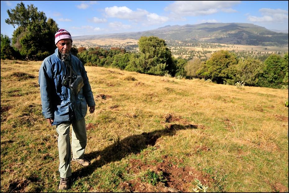 Przewodnik Ludzie Nikon D300 Sigma 15-30mm f/3.5-4.5 Aspherical Etiopia 0 pustynia drzewo górzyste formy terenu ekosystem wzgórze grzbiet łąka ścieżka roślina trawa