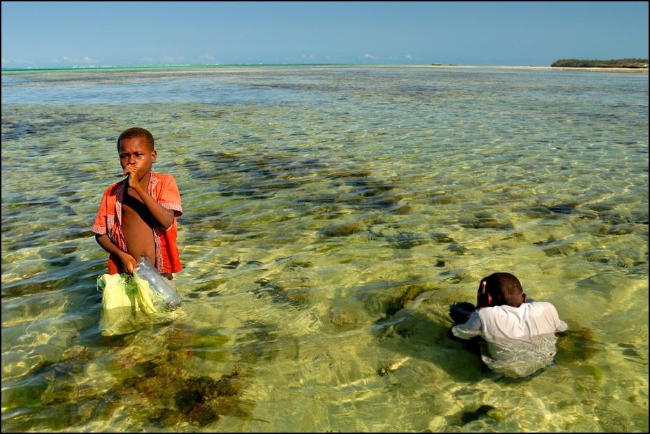 Dzieci zbierające małże Zanzibar 0 Nikon D200 AF-S Zoom-Nikkor 18-70mm f/3.5-4.5G IF-ED morze woda zbiornik wodny plaża Wybrzeże wakacje ocean niebo piasek