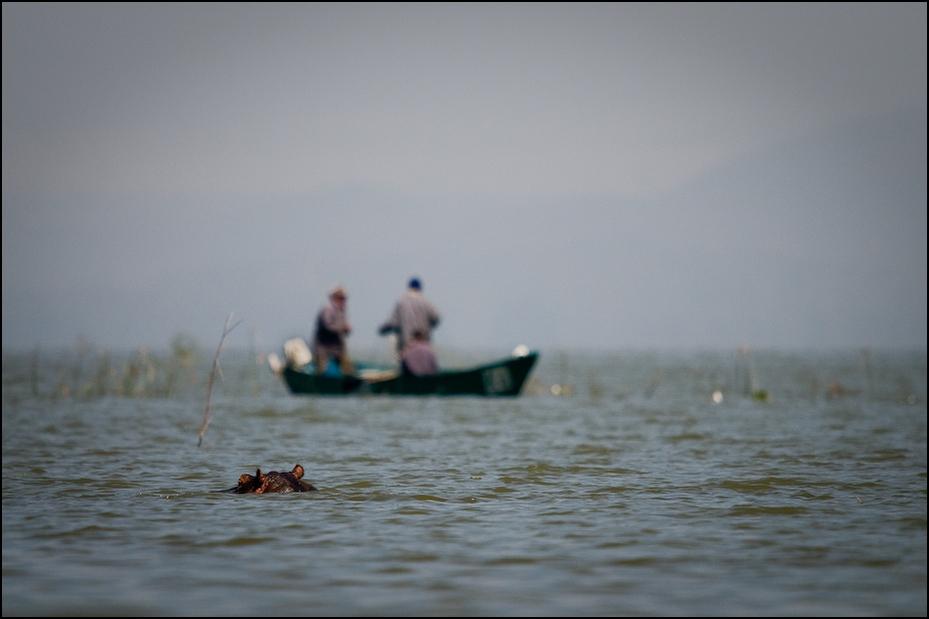 Rybacy jeziorze Naivasha Klimaty Nikon D300 Sigma APO 500mm f/4.5 DG/HSM Kenia 0 woda morze zbiornik wodny transport wodny niebo horyzont Chmura Wybrzeże rzeka ocean