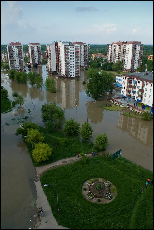 Osiedle Kozanów Powódź 0 Wrocław Nikon D200 AF-S Zoom-Nikkor 17-55mm f/2.8G IF-ED obszar Metropolitalny obszar miejski Miasto dzielnica odbicie woda widok z lotu ptaka przedmieście cityscape sąsiedztwo
