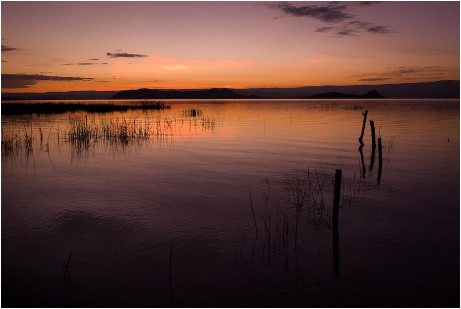 Jezioro Baringo rankiem Krajobraz Nikon D200 AF-S Zoom-Nikkor 17-55mm f/2.8G IF-ED Kenia 0 woda odbicie niebo zachód słońca horyzont spokojna mokradło zmierzch wschód słońca świt