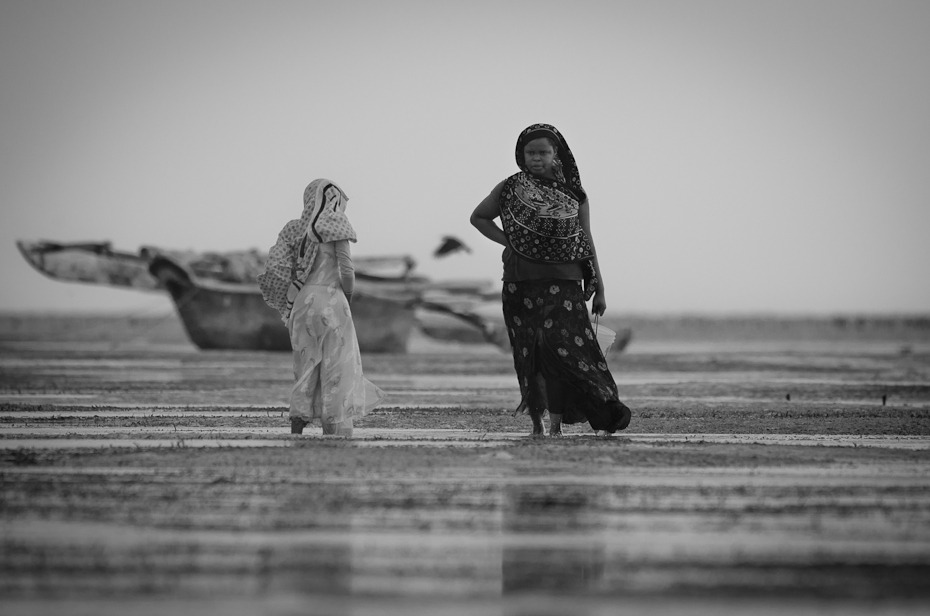 Zbieraczki małży Ludzie Nikon D7000 AF-S Nikkor 70-200mm f/2.8G Zanzibar 0 woda czarny fotografia czarny i biały morze fotografia monochromatyczna monochromia piasek niebo