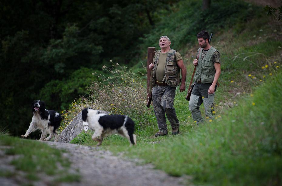 polowanie Toskania 0 Nikon D7000 AF-S Nikkor 70-200mm f/2.8G pustynia grupa psów pies piesze wędrówki drzewo pies jak ssak trawa przygoda roślina pieszy