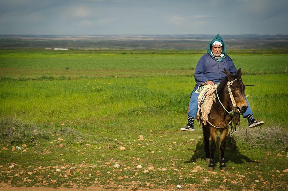 Jeździec Maroko Nikon D7000 AF-S Zoom-Nikkor 17-55mm f/2.8G IF-ED Budapeszt Bamako 0 łąka ekosystem koń step pole pastwisko jazda na szlaku trawa koń jak ssak ecoregion
