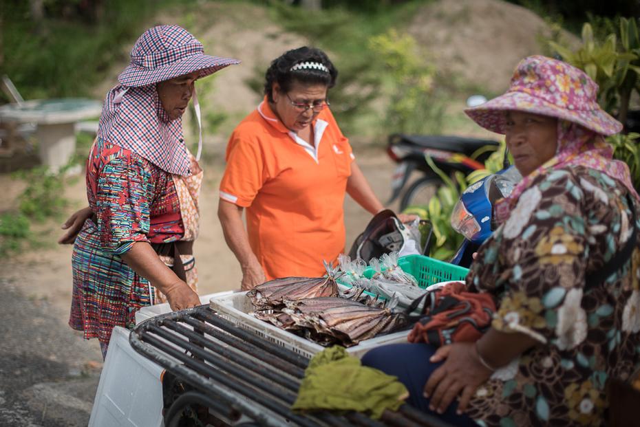 Sprzedaż ryb Small business nikon d750 Sigma 15-30mm f/3.5-4.5 Aspherical Tajlandia 0 roślina drzewo rekreacja sprzedawca