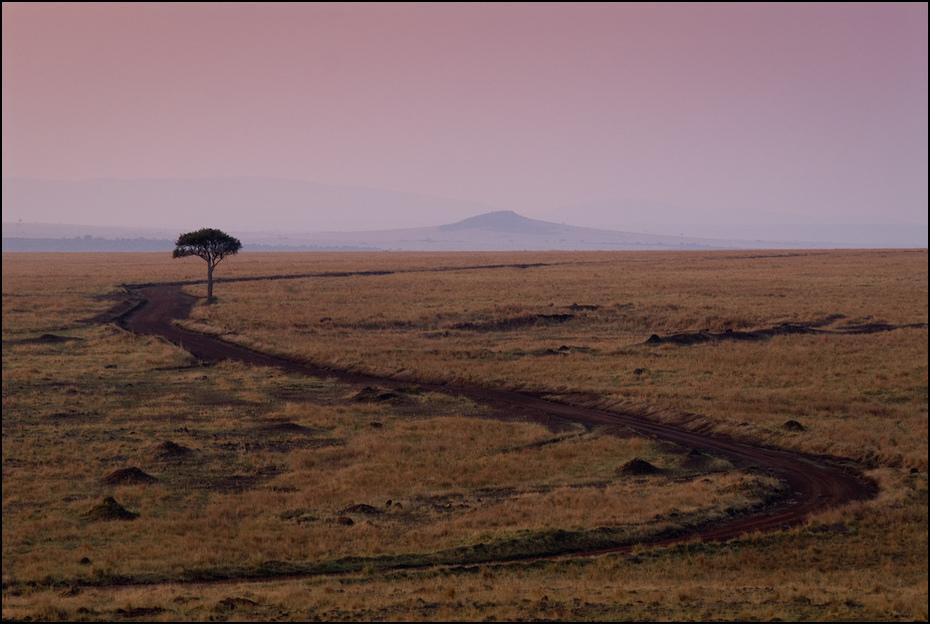 Masai Mara rano Krajobraz Nikon D200 AF-S Nikkor 70-200mm f/2.8G Kenia 0 ekosystem Równina horyzont ecoregion step niebo sawanna krajobraz pustynia wzgórze