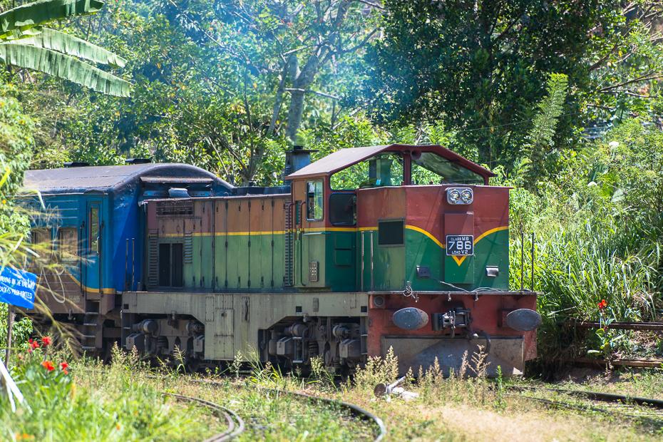 Pociąg wjeżdża Ella Street Nikon D7200 AF-S Nikkor 70-200mm f/2.8G Sri Lanka 0 transport transport kolejowy pociąg Natura lokomotywa roślina tabor tor drzewo pojazd