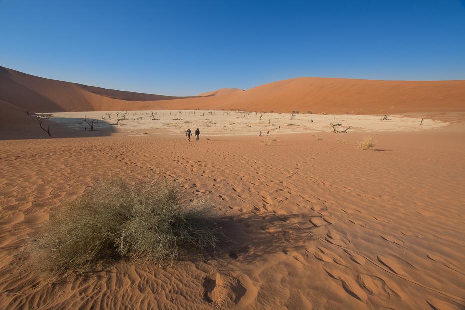 Deadvlei Krajobraz Nikon D7100 Sigma 10-20mm f/3.5 HSM Namibia 0 pustynia erg śpiewający piasek eoliczny krajobraz piasek niebo sahara ekosystem wydma krajobraz