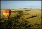 Baloon Safari #6