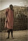 Starzec Samburu