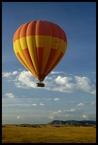 Baloon Safari #1