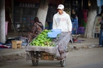 Sprzedawca owoców