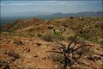 Etiopskie góry escape