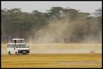 Kenijskie podróże|escape