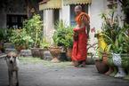 Świątynia w Thalang