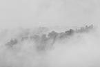 W chmurach|escape
