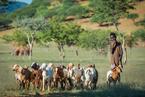 Wioska Himba