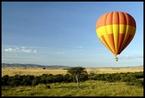 Baloon Safari #5