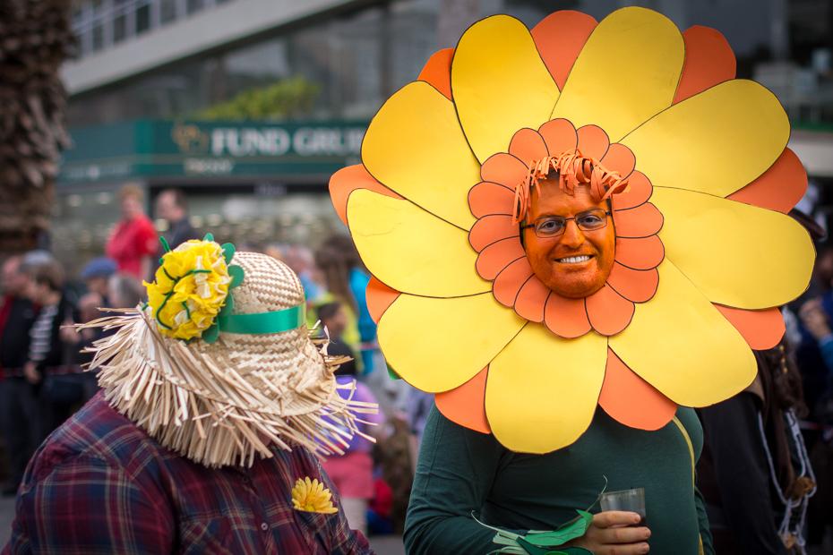 Kwiat Karnawał Nikon D7200 AF-S Nikkor 50mm f/1.4G Teneryfa 0 żółty kwiat karnawał roślina wiosna zabawa festiwal florystyka