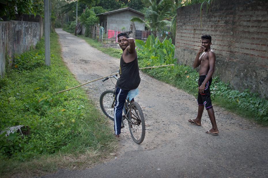 ryby Street Nikon D7200 AF-S Zoom-Nikkor 17-55mm f/2.8G IF-ED Sri Lanka 0 pojazd lądowy sport rowerowy rower Jazda rowerem Natura pojazd drzewo ścieżka Droga rower drogowy